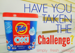 Tide Oxi Blogger Challenge