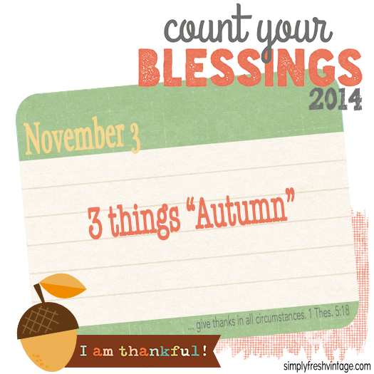 November ... a time to focus on all we have, not what we lack. Please join me each day as we take a moment to celebrate our blessings. | SimplyFreshVintage.com