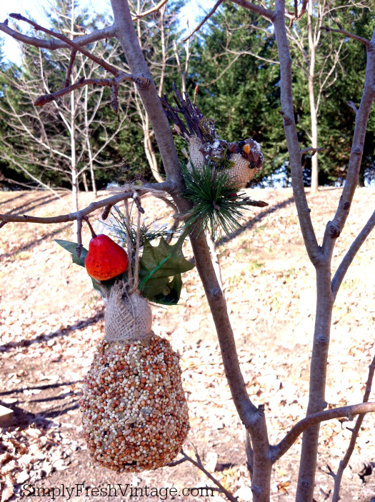 Partridge In A Pear Tree ... a woodland bird feeder | SimplyFreshVintage.com